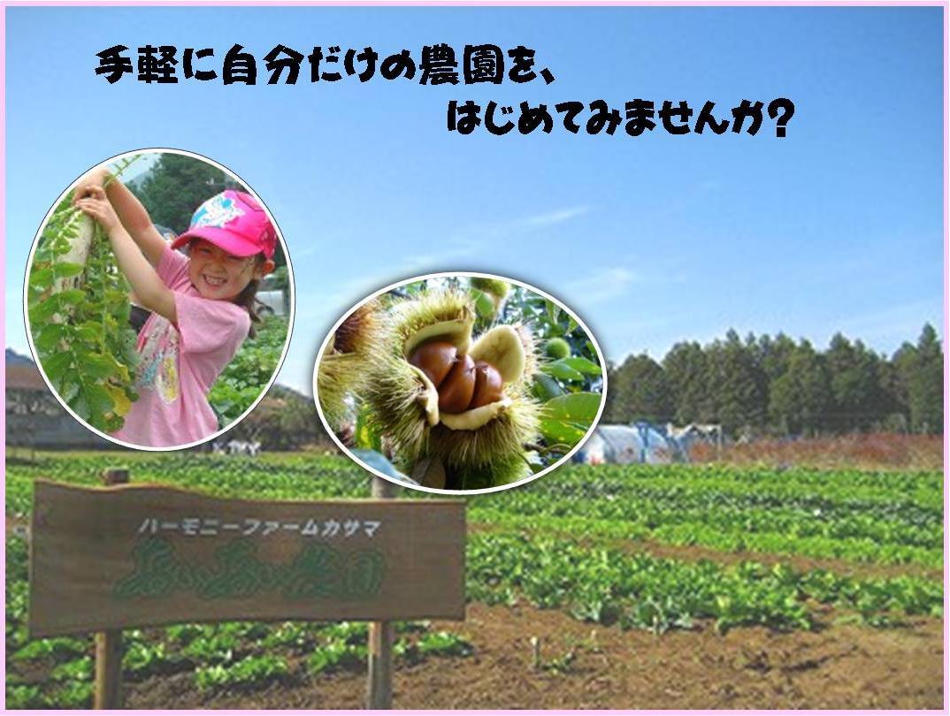 『あいあい農園』の画像