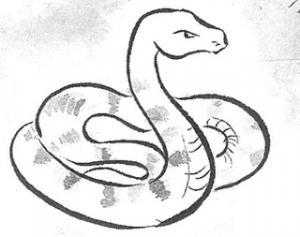 画像:大蛇(だいじゃ)