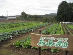 画像:市民農園(しみんのうえん)1