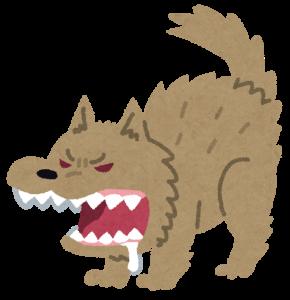 『野犬、野良犬』の画像