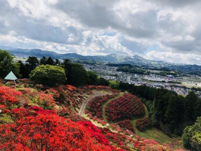 『2018/4/18つつじ頂』の画像