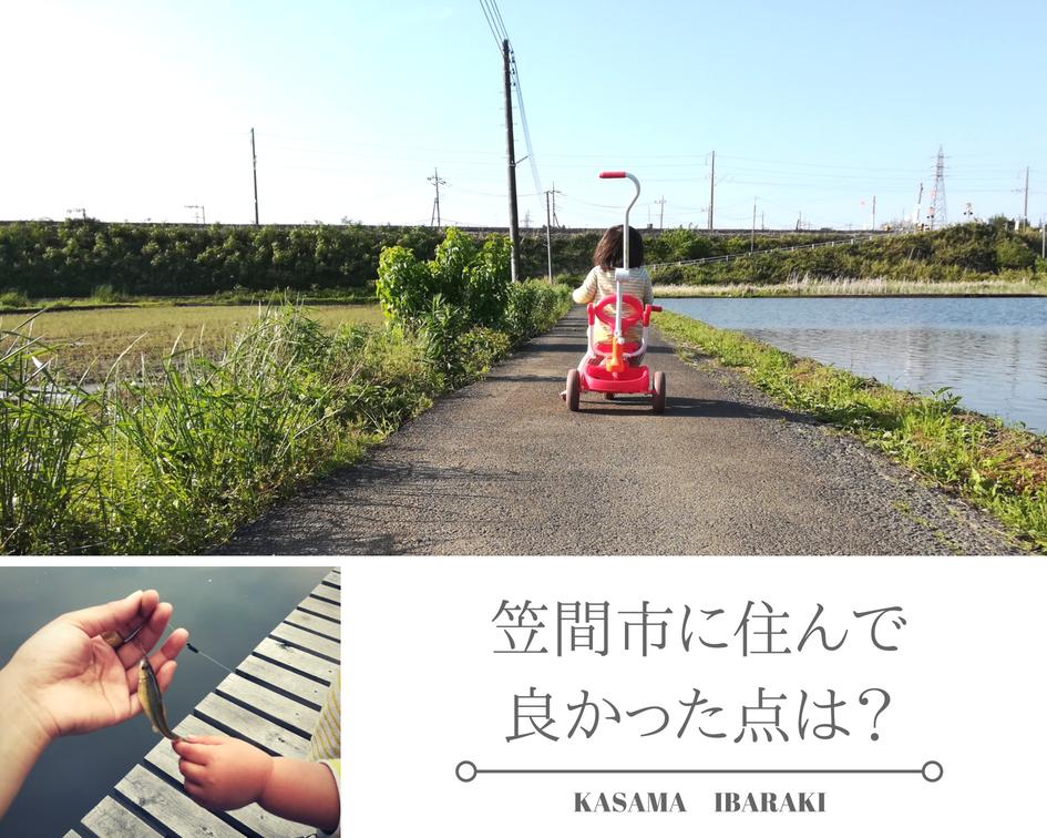 『大橋さん3』の画像