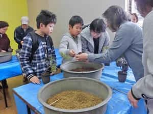 『ミニ盆栽を作ろう』の画像