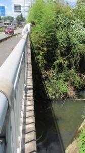 『見田々橋』の画像