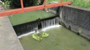 『大日堰』の画像