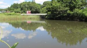 『上谷原池』の画像