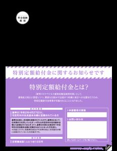 『特定定額給付金申請書』の画像
