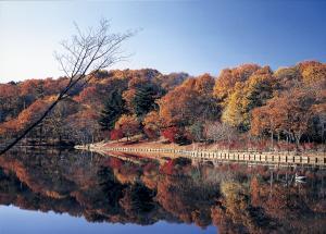 『北山公園_0925』の画像