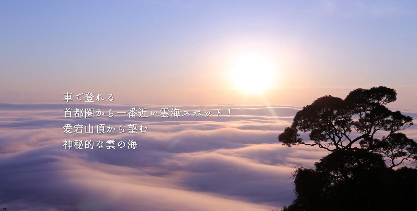 愛宕山雲海